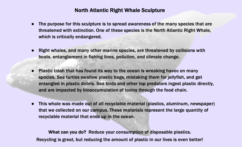 The motivation for the whale sculpture